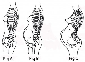 Different stages of pregnancy postures